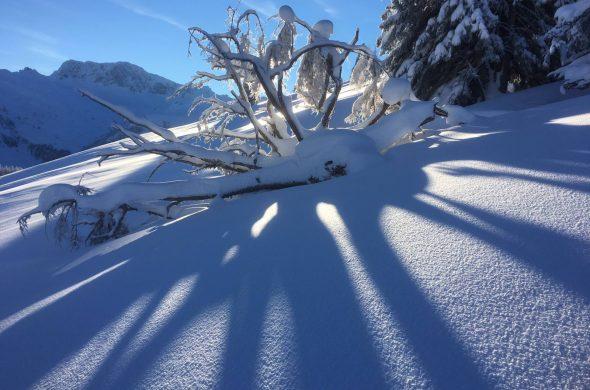 Schneeshuhtour-Bergün-Keschhütte-01